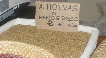 fenogreco
