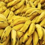 Plátanos y sus Beneficios