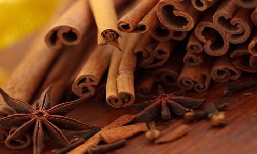 canela planta medicinal
