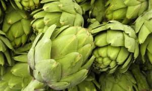 Planta Alcachofa y sus Beneficios