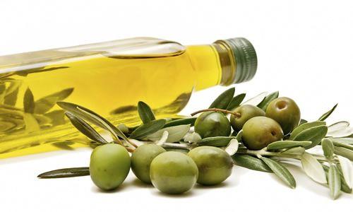 fotos olivos aceites