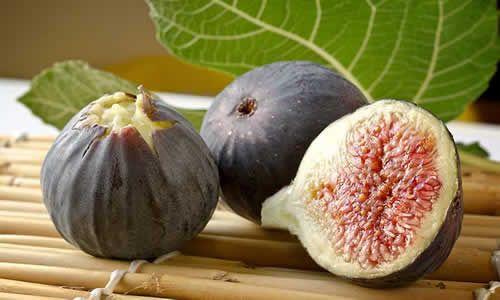 fotos higuera fruta