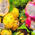 Planta Pitahaya y sus Beneficios